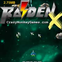 Raiden Space Ship