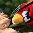 Parque de atracciones Angry Birds